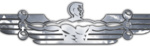 inflight-fitness-logo
